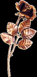 Bronze Roses- stra-34400