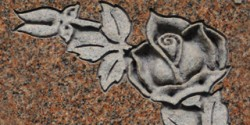Deluxe  Shape Carve Rose
