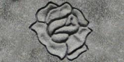 Shape Carve Rose