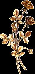 Bronze Roses-stra-32010